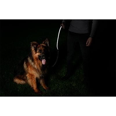 STEP BY STEP dog collar,  black